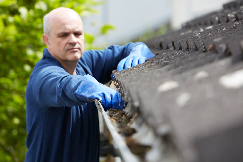 Give Your Home Exterior a Spring Cleaning